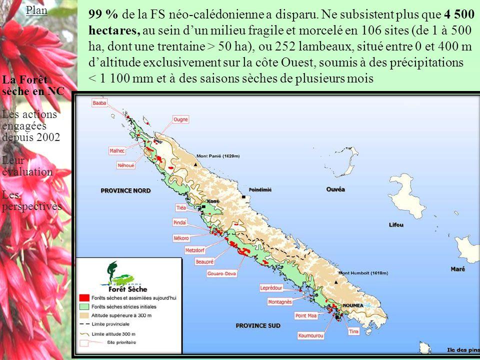 Workshop Biodiversité 25 avril 2012 99 % de la FS néo-calédonienne a disparu. Ne subsistent plus que 4 500 hectares, au sein d'un milieu fragile et mo