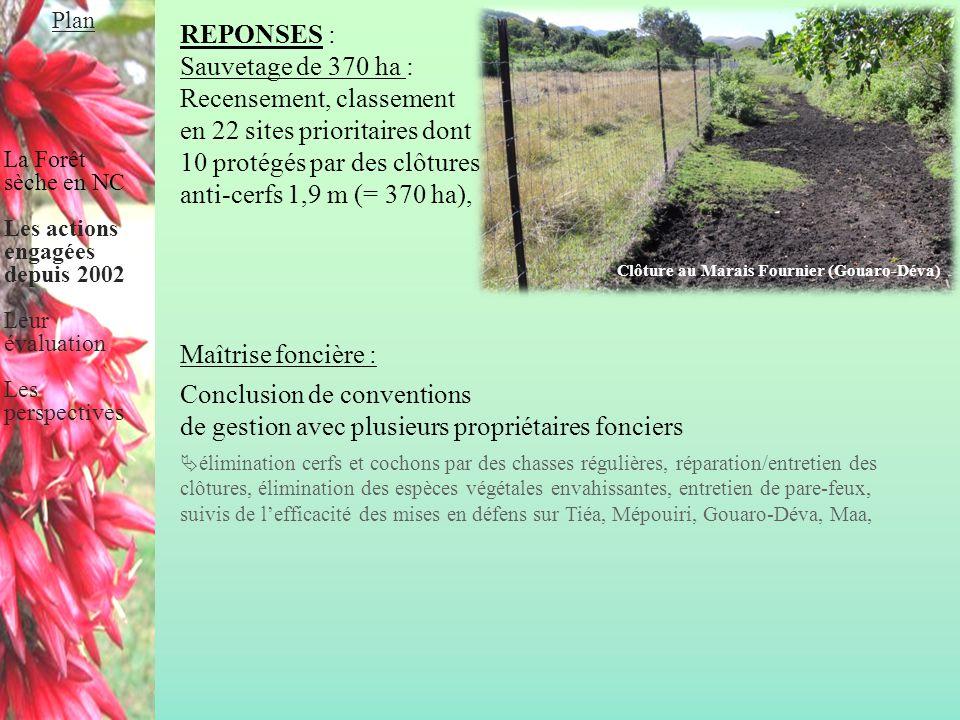 REPONSES : Sauvetage de 370 ha : Recensement, classement en 22 sites prioritaires dont 10 protégés par des clôtures anti-cerfs 1,9 m (= 370 ha), Maîtr