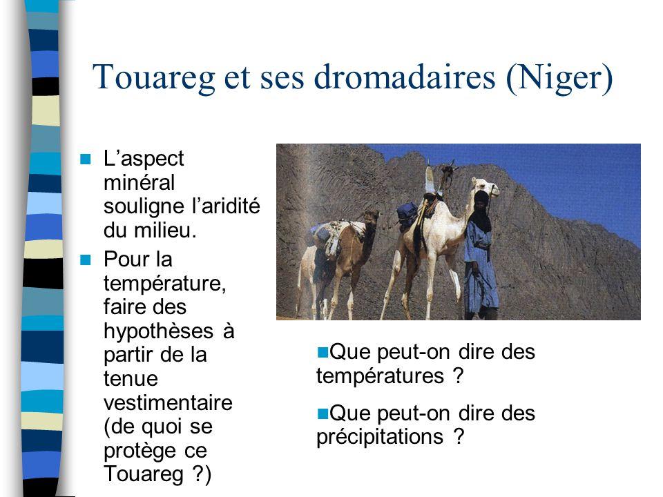 Touareg et ses dromadaires (Niger) L'aspect minéral souligne l'aridité du milieu. Pour la température, faire des hypothèses à partir de la tenue vesti