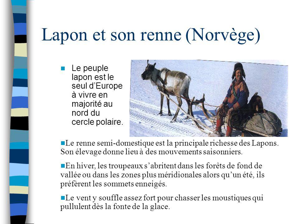 Lapon et son renne (Norvège) Le peuple lapon est le seul d'Europe à vivre en majorité au nord du cercle polaire. Le renne semi-domestique est la princ