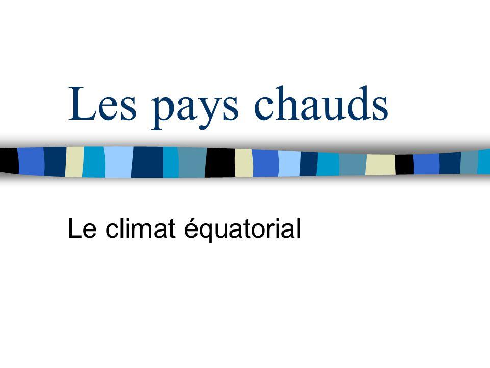 Les pays chauds Le climat équatorial