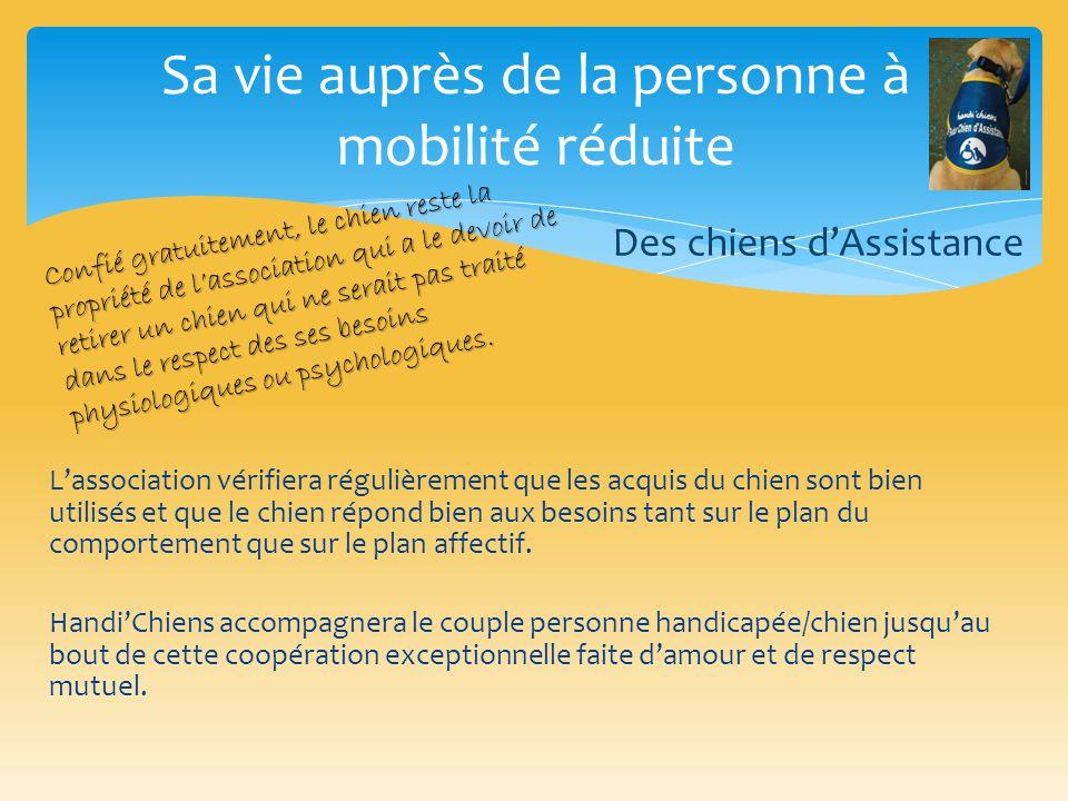 Sa vie auprès de la personne à mobilité réduite Des chiens d'Assistance Confié gratuitement, le chien reste la propriété de l'association qui a le dev