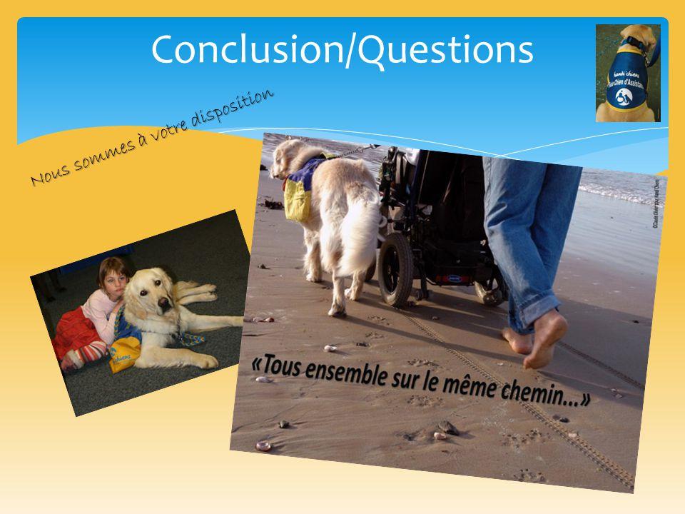 Conclusion/Questions Nous sommes à votre disposition