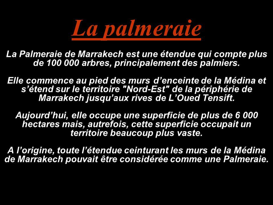 La palmeraie La Palmeraie de Marrakech est une étendue qui compte plus de 100 000 arbres, principalement des palmiers. Elle commence au pied des murs