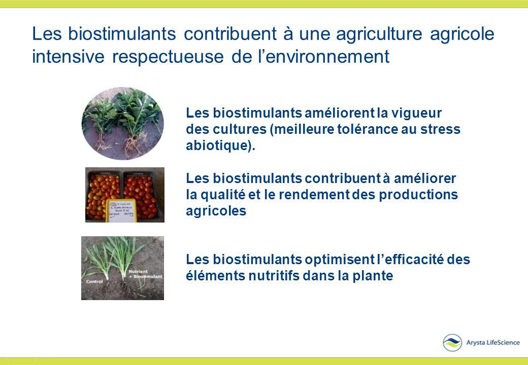 Les biostimulants contribuent à une agriculture agricole intensive respectueuse de l'environnement Les biostimulants améliorent la vigueur des culture
