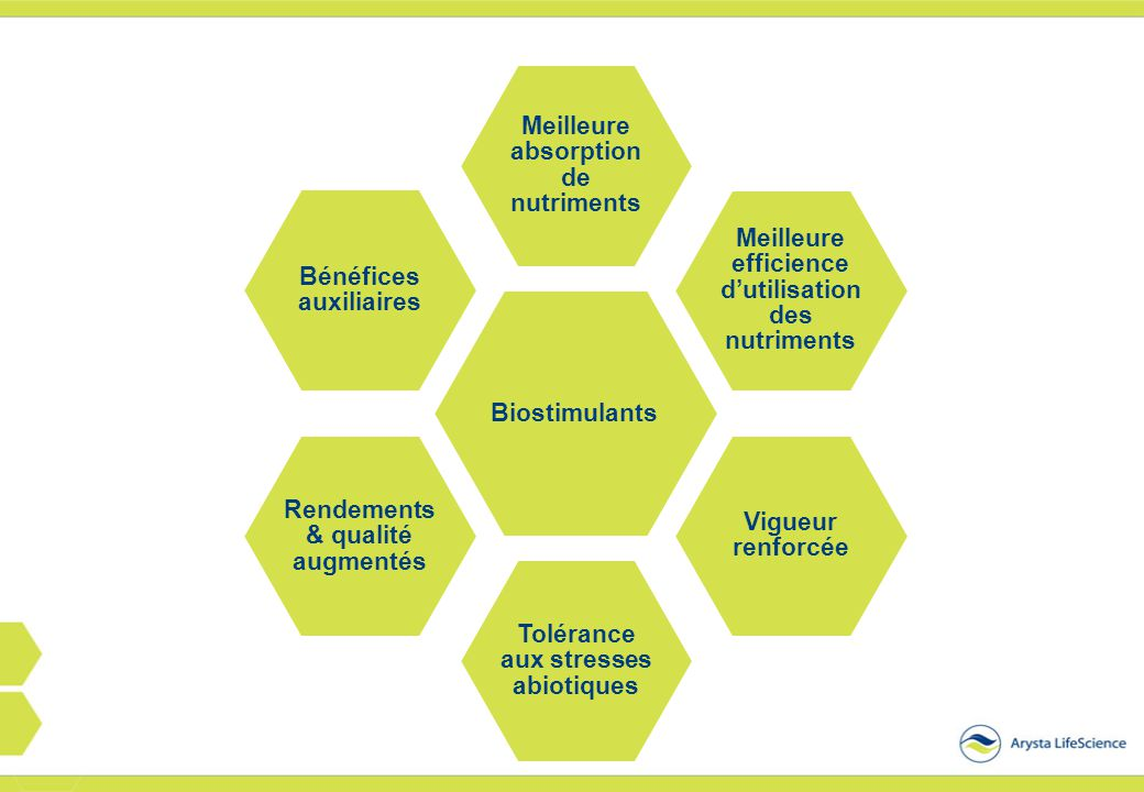 Biostimulants Meilleure absorption de nutriments Meilleure efficience d'utilisation des nutriments Vigueur renforcée Tolérance aux stresses abiotiques