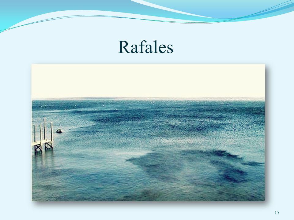 Rafales 15