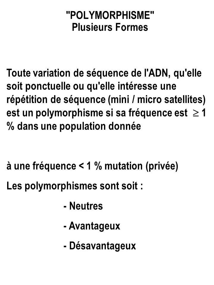 POLYMORPHISME Plusieurs Formes Toute variation de séquence de l ADN, qu elle soit ponctuelle ou qu elle intéresse une répétition de séquence (mini / micro satellites) est un polymorphisme si sa fréquence est  1 % dans une population donnée à une fréquence < 1 % mutation (privée) Les polymorphismes sont soit : - Neutres - Avantageux - Désavantageux