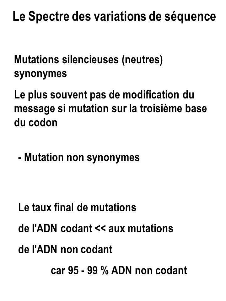 Le Spectre des variations de séquence Mutations silencieuses (neutres) synonymes Le plus souvent pas de modification du message si mutation sur la troisième base du codon - Mutation non synonymes Le taux final de mutations de l ADN codant << aux mutations de l ADN non codant car 95 - 99 % ADN non codant