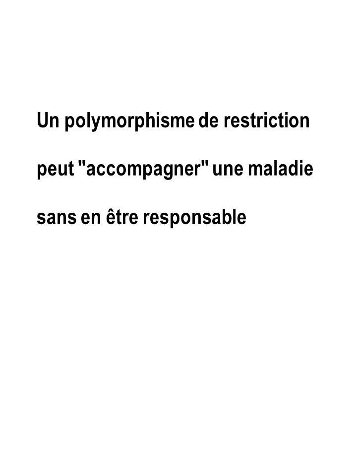 Un polymorphisme de restriction peut accompagner une maladie sans en être responsable