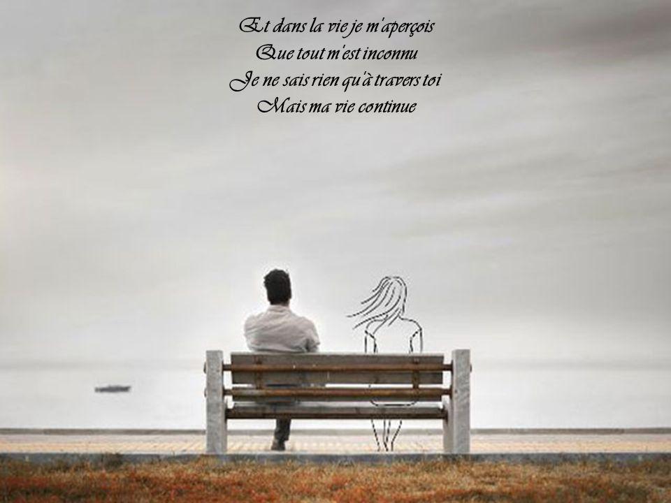 À travers d'autres amours C'est toujours toi que je fuis Je n'ai plus assez de jours Je n'ai plus assez de nuits Pour pouvoir t'oublier mon amour