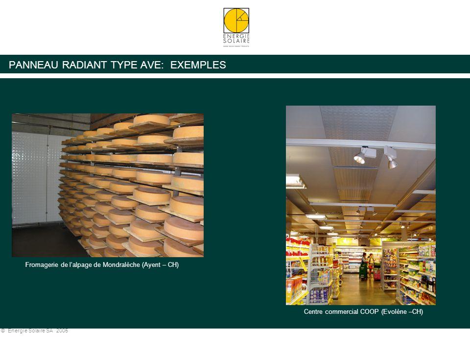 © Energie Solaire SA 2005 PANNEAU RADIANT TYPE AVE: EXEMPLES Centre d'entretien Hertz (Roissy – France) Centre commercial COOP (Evolène –CH) Fromageri