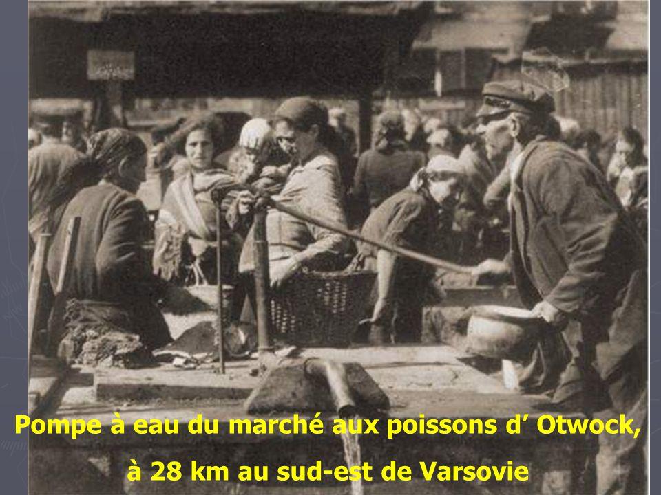 Jour de marché à Hrubiesz - 1925.
