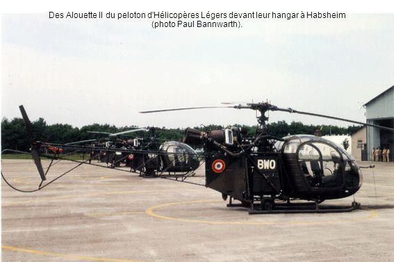 Des Alouette II du peloton d'Hélicopères Légers devant leur hangar à Habsheim (photo Paul Bannwarth).