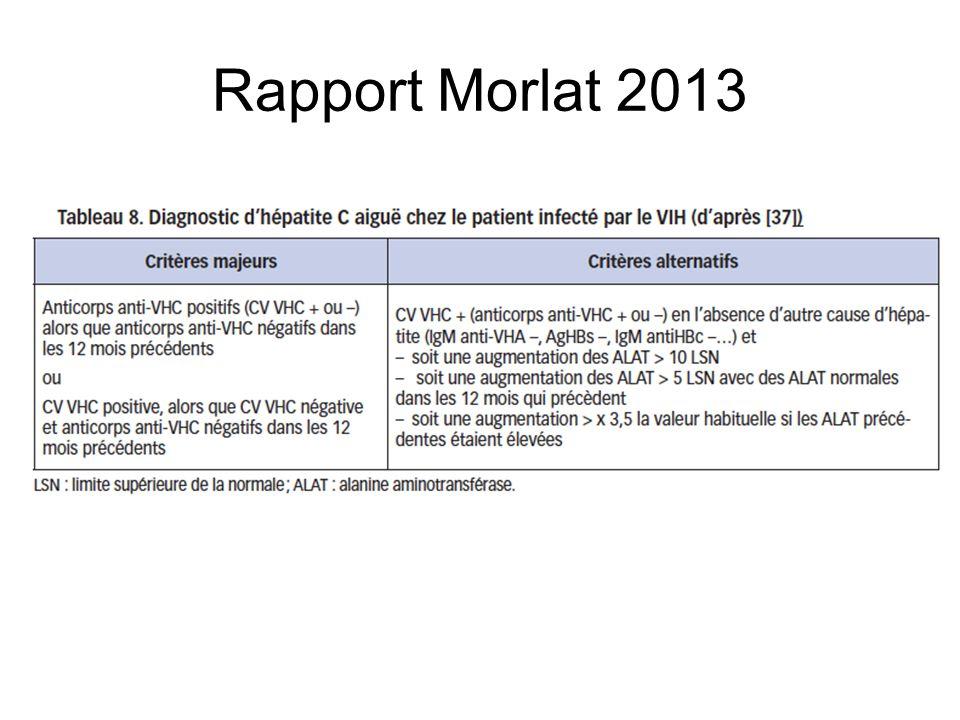 Rapport Morlat 2013