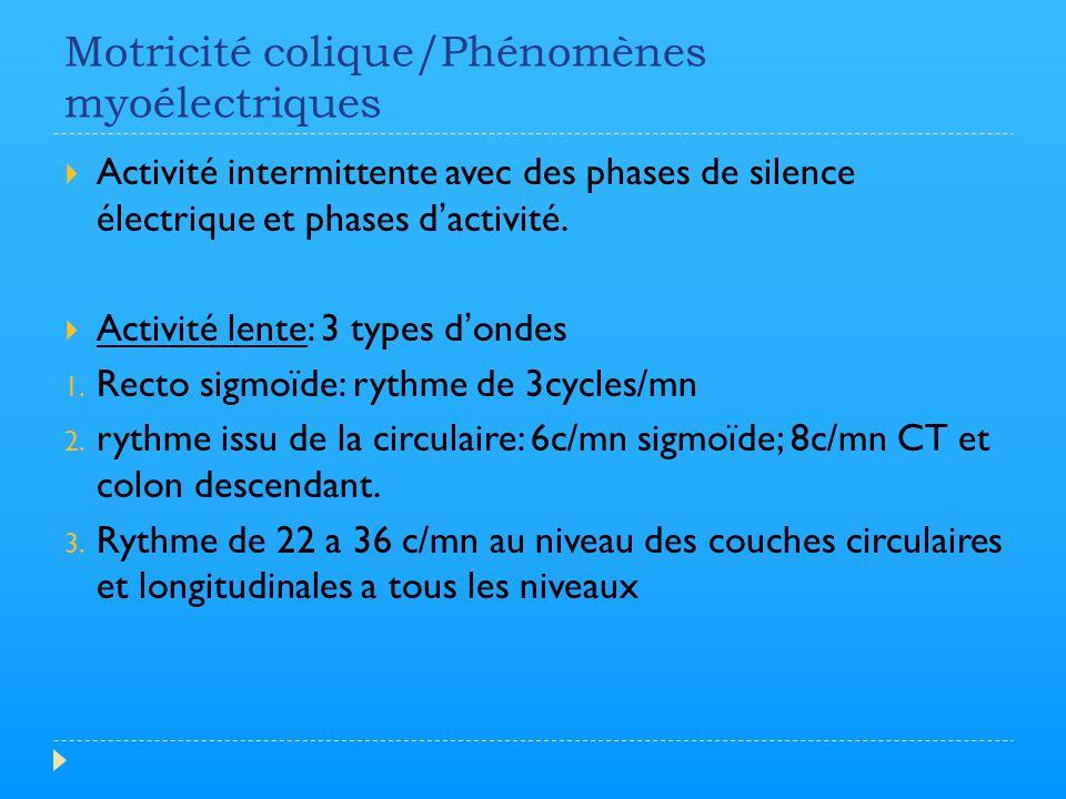 Motricité colique/Phénomènes myoélectriques  Activité intermittente avec des phases de silence électrique et phases d'activité.  Activité lente: 3 t