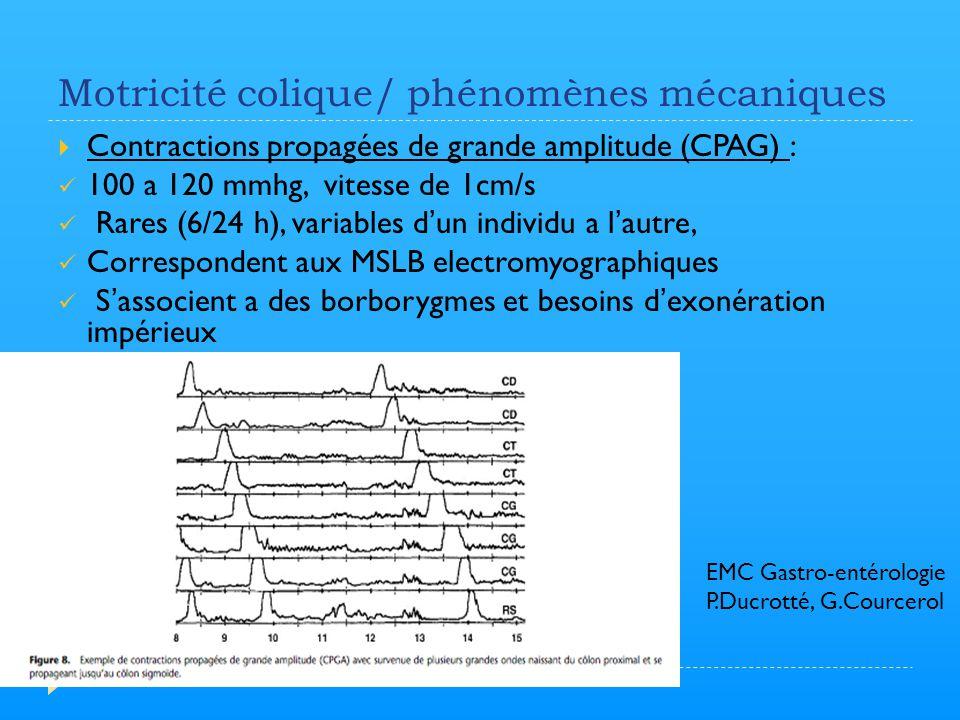 Motricité colique/ phénomènes mécaniques  Contractions propagées de grande amplitude (CPAG) : 100 a 120 mmhg, vitesse de 1cm/s Rares (6/24 h), variab
