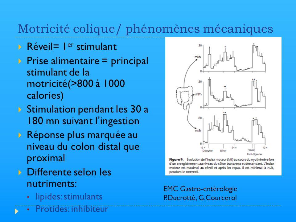Motricité colique/ phénomènes mécaniques  Réveil= 1 er stimulant  Prise alimentaire = principal stimulant de la motricité(>800 à 1000 calories)  St