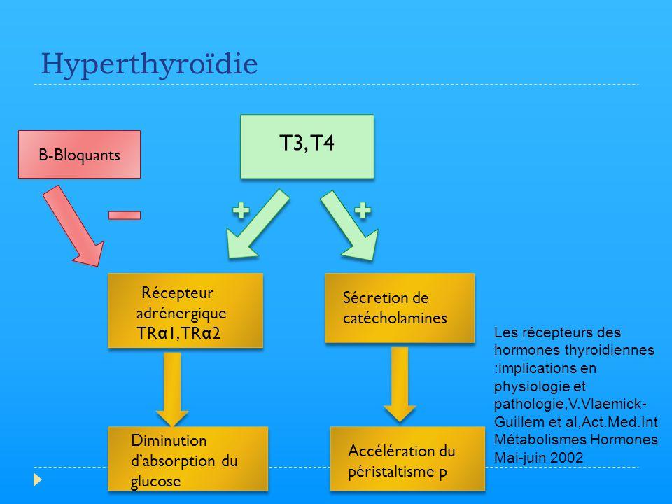 Hyperthyroïdie T3, T4 Récepteur adrénergique TR α 1, TR α 2 Sécretion de catécholamines Diminution d'absorption du glucose Accélération du péristaltis