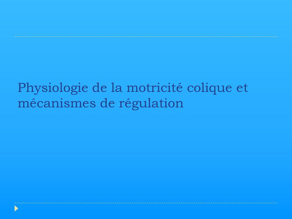 Physiologie de la motricité colique et mécanismes de régulation