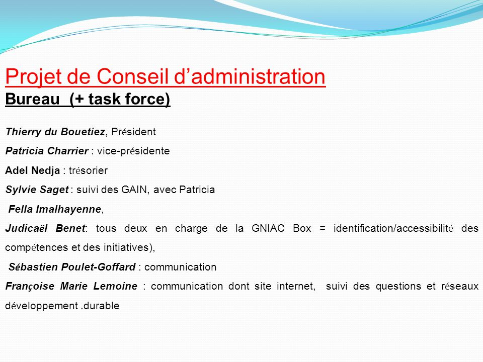 Projet de Conseil d'administration Bureau (+ task force) Thierry du Bouetiez, Pr é sident Patricia Charrier : vice-pr é sidente Adel Nedja : tr é sori