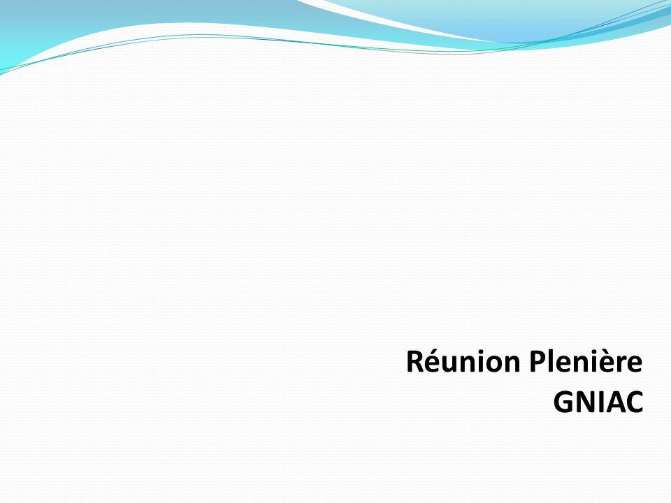 Réunion Plenière GNIAC