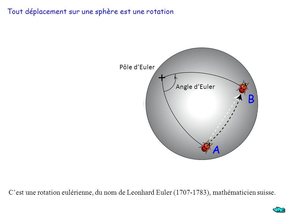 Tout déplacement sur une sphère est une rotation Pôle d'Euler Angle d'Euler C'est une rotation eulérienne, du nom de Leonhard Euler (1707-1783), mathé
