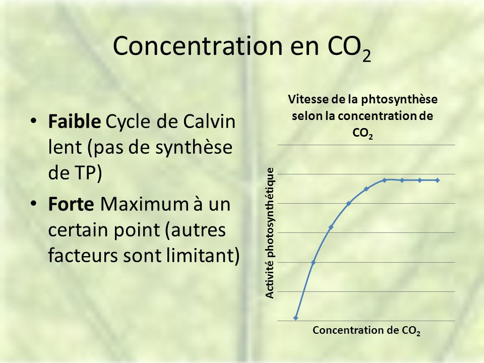 Concentration en CO 2 Faible Cycle de Calvin lent (pas de synthèse de TP) Forte Maximum à un certain point (autres facteurs sont limitant)