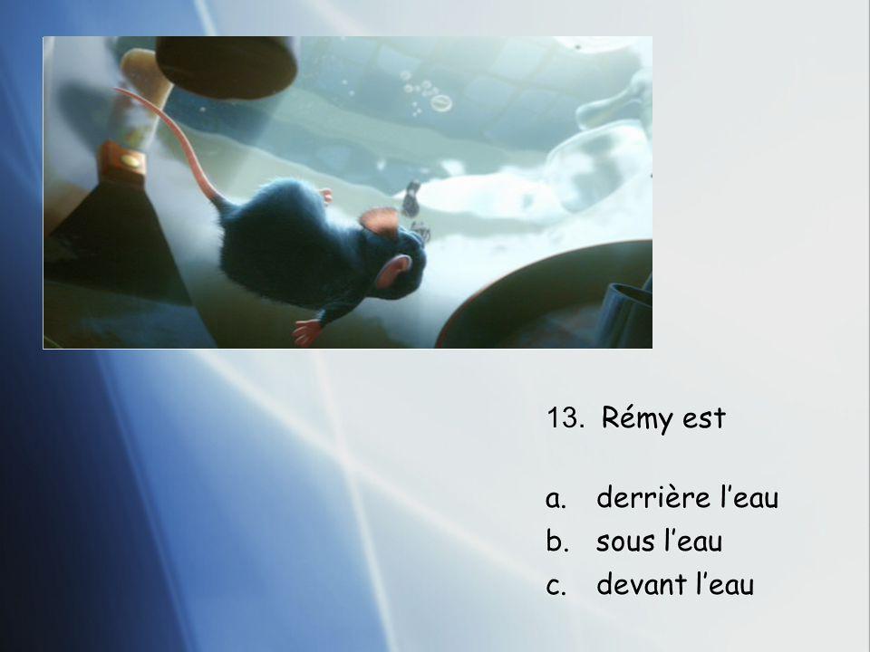 13. Rémy est a.derrière l'eau b.sous l'eau c.devant l'eau