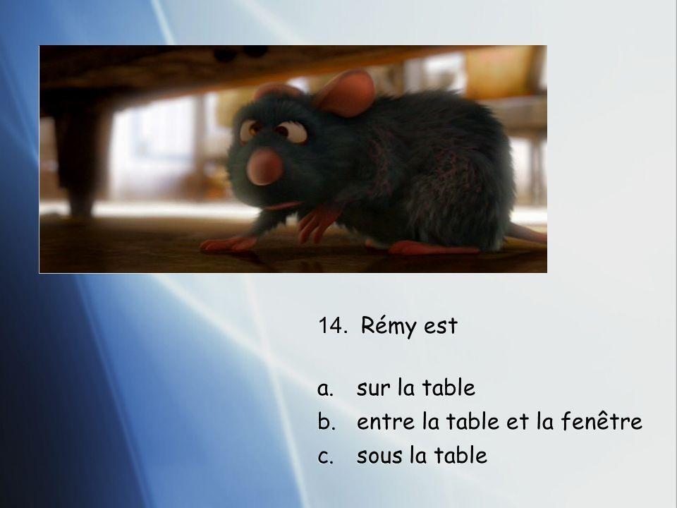 14. Rémy est a.sur la table b.entre la table et la fenêtre c.sous la table