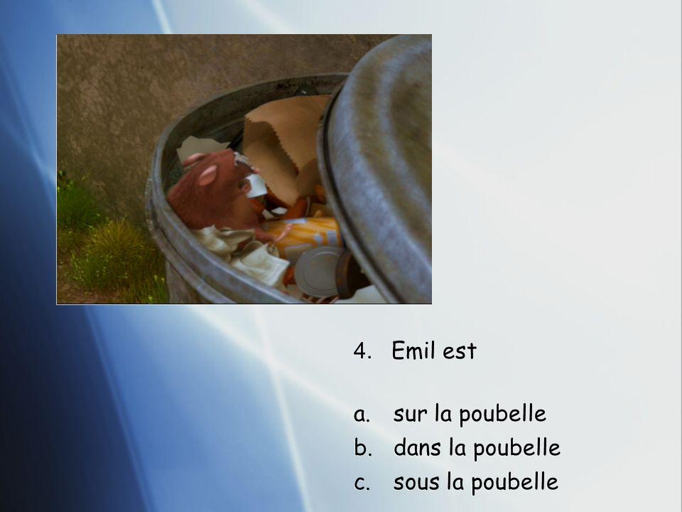 4. Emil est a.sur la poubelle b.dans la poubelle c.sous la poubelle
