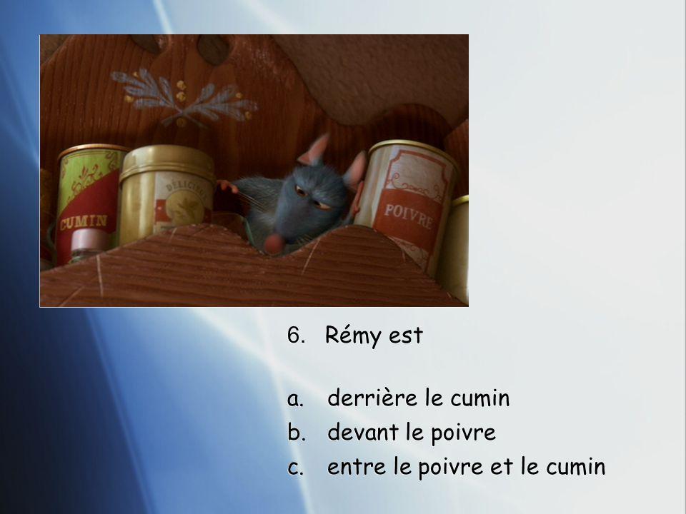 6. Rémy est a.derrière le cumin b.devant le poivre c.entre le poivre et le cumin