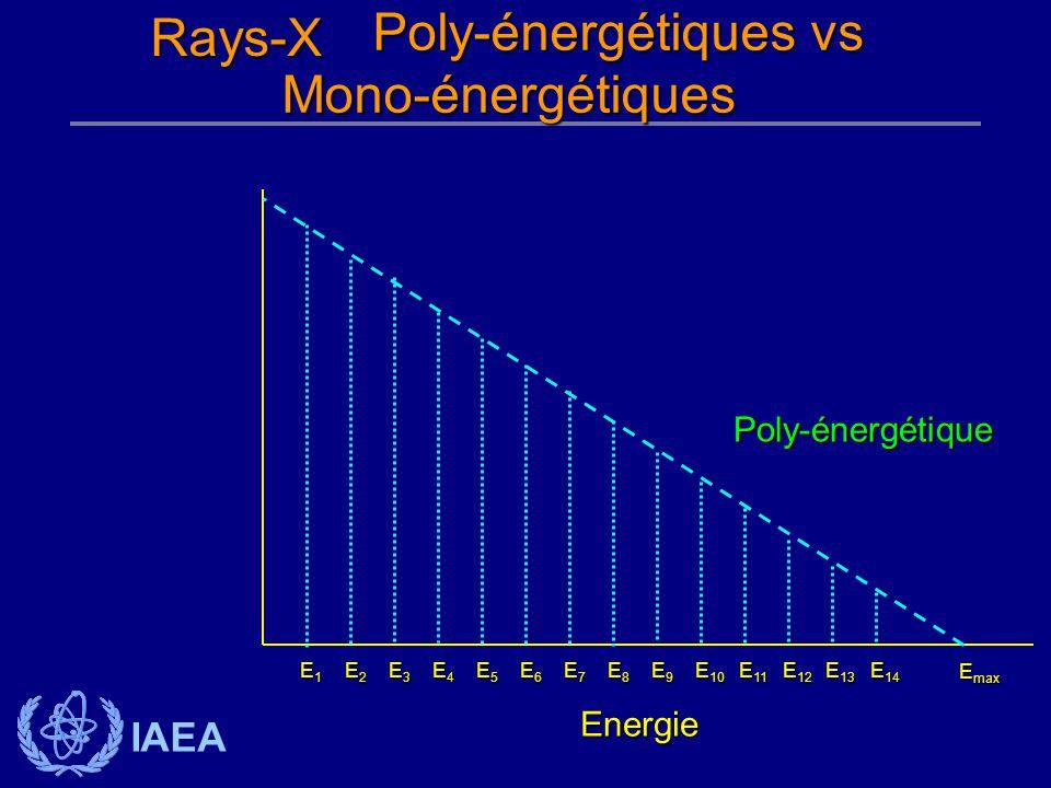 IAEA Poly-énergétiques vs Poly-énergétiques vsMono-énergétiques Energie Poly-énergétique E1E1E1E1 E6E6E6E6 E7E7E7E7 E8E8E8E8 E9E9E9E9 E 10 E 11 E 12 E