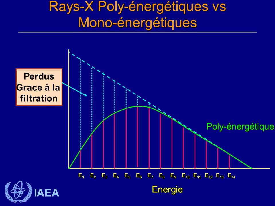 IAEA Perdus Grace à la filtration Energie Poly-énergétique E1E1E1E1 E6E6E6E6 E7E7E7E7 E8E8E8E8 E9E9E9E9 E 10 E 11 E 12 E 13 E 14 E2E2E2E2 E3E3E3E3 E4E