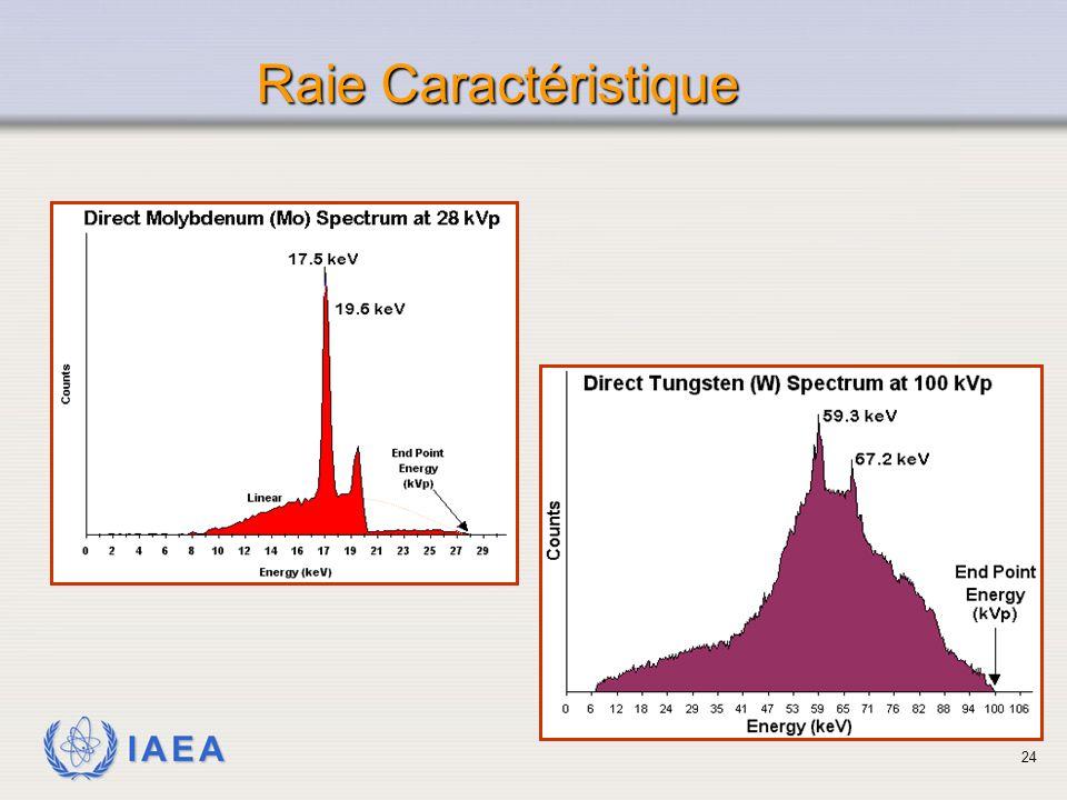 IAEA Raie Caractéristique 24