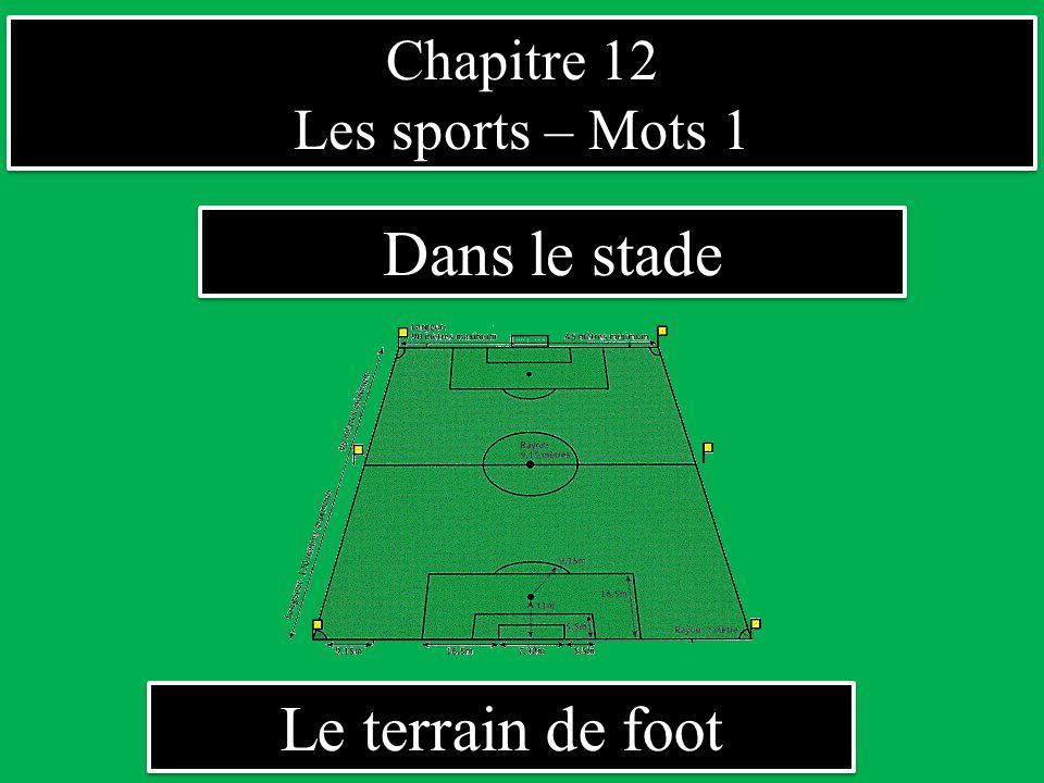 Chapitre 12 Les sports – Mots 1 Chapitre 12 Les sports – Mots 1 Dans le stade Le terrain de foot