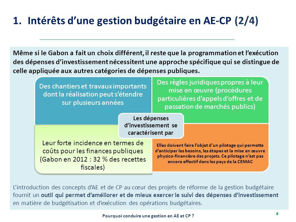 2-6/12/2013 4 Même si le Gabon a fait un choix différent, il reste que la programmation et l'exécution des dépenses d'investissement nécessitent une a