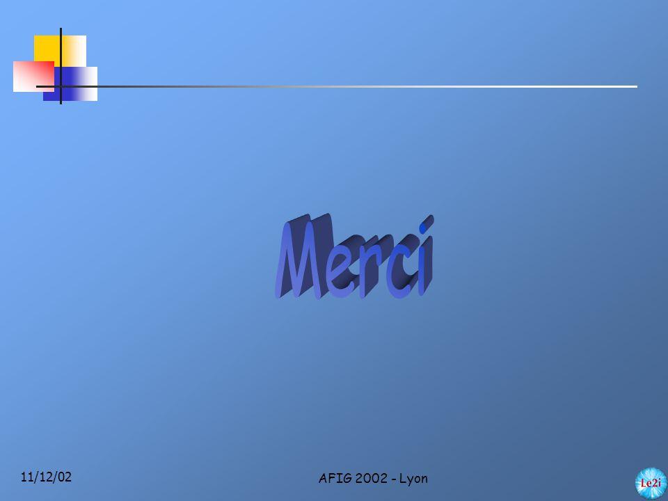 11/12/02 AFIG 2002 - Lyon