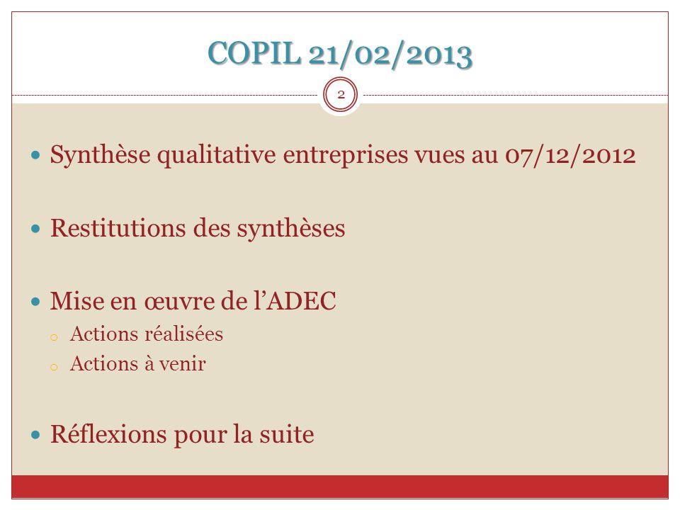 COPIL 21/02/2013 Synthèse qualitative entreprises vues au 07/12/2012 Restitutions des synthèses Mise en œuvre de l'ADEC o Actions réalisées o Actions