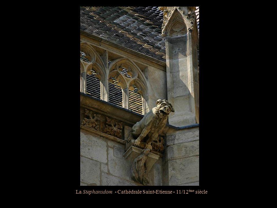 La Stephansdom - Cathédrale Saint-Etienne - 11/12 ème siècle Détails d'une gargouille
