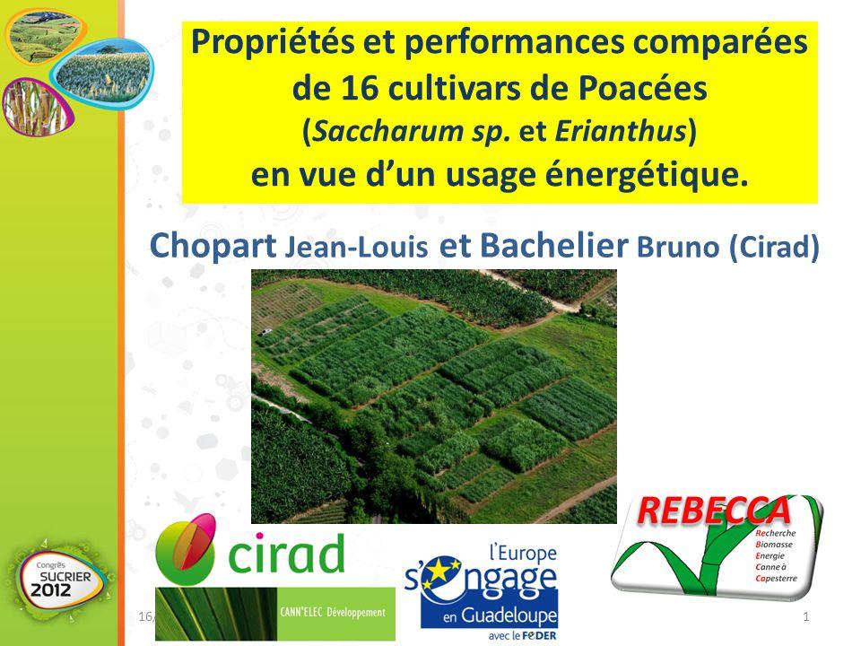 Propriétés et performances comparées de 16 cultivars de Poacées (Saccharum sp.