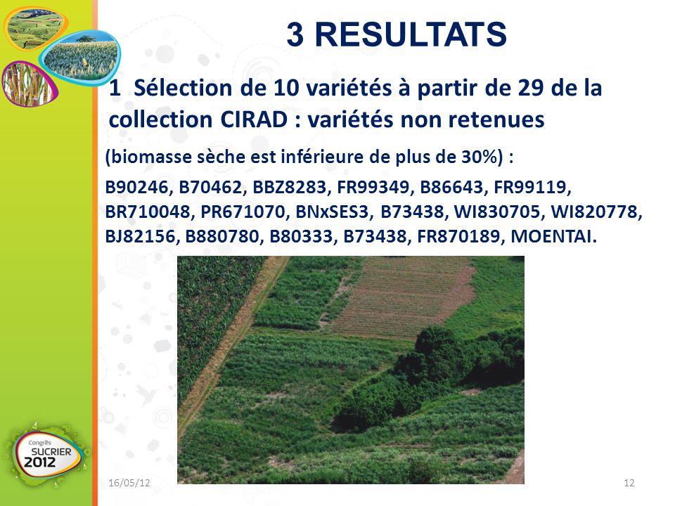 3 RESULTATS (biomasse sèche est inférieure de plus de 30%) : B90246, B70462, BBZ8283, FR99349, B86643, FR99119, BR710048, PR671070, BNxSES3, B73438, WI830705, WI820778, BJ82156, B880780, B80333, B73438, FR870189, MOENTAI.