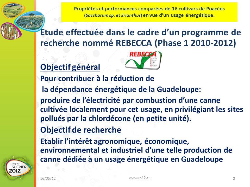 Etude effectuée dans le cadre d'un programme de recherche nommé REBECCA (Phase 1 2010-2012) Objectif général Pour contribuer à la réduction de la dépendance énergétique de la Guadeloupe: produire de l'électricité par combustion d'une canne cultivée localement pour cet usage, en privilégiant les sites pollués par la chlordécone (en petite unité).
