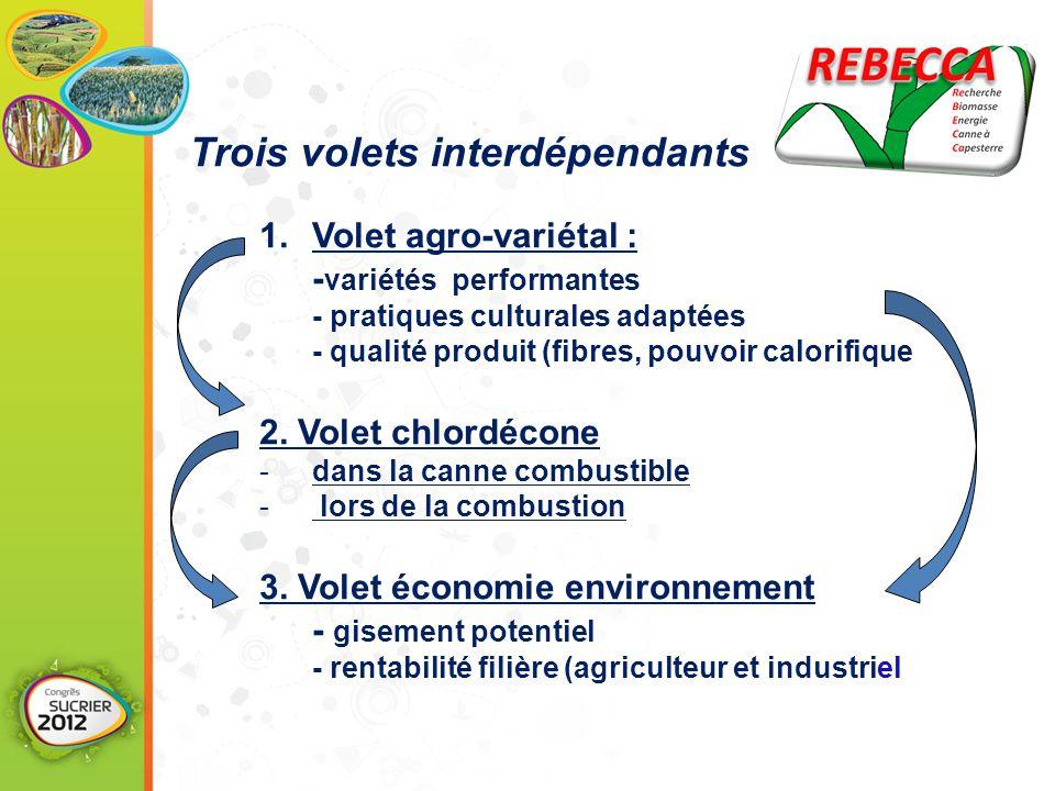 1.Volet agro-variétal : - variétés performantes - pratiques culturales adaptées - qualité produit (fibres, pouvoir calorifique 2.