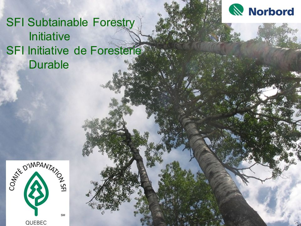 1 Objectifs de la formation et clientèle visée S'arrimer avec certaines exigences du standard SFI; Donner une formation de base en Aménagement Forestier Durable (AFD); S'adresse aux fournisseurs de bois de la compagnie.