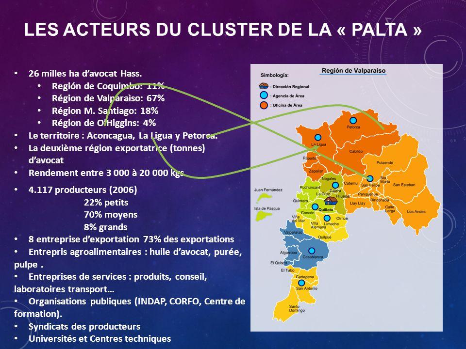 LES ACTEURS DU CLUSTER DE LA « PALTA » 4.117 producteurs (2006) 22% petits 70% moyens 8% grands 8 entreprise d'exportation 73% des exportations Entrepris agroalimentaires : huile d'avocat, purée, pulpe.