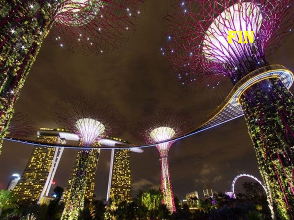 Les super arbres de Singapour