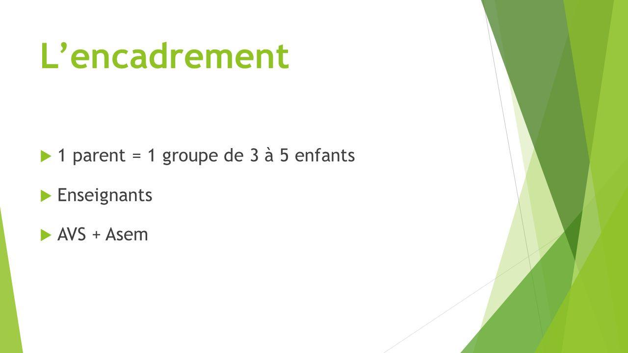 L'encadrement  1 parent = 1 groupe de 3 à 5 enfants  Enseignants  AVS + Asem