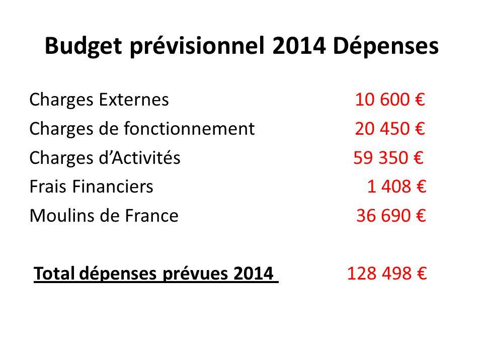 Budget prévisionnel 2014 Dépenses Charges Externes 10 600 € Charges de fonctionnement 20 450 € Charges d'Activités 59 350 € Frais Financiers 1 408 € M