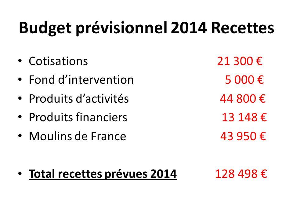 Budget prévisionnel 2014 Recettes Cotisations 21 300 € Fond d'intervention 5 000 € Produits d'activités 44 800 € Produits financiers 13 148 € Moulins